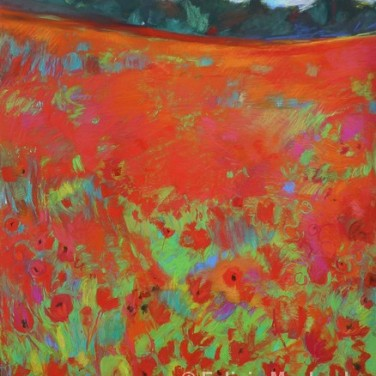 Poppy Field II by Felicia Macheske