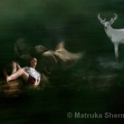 Star Seed by Matruka Sherman