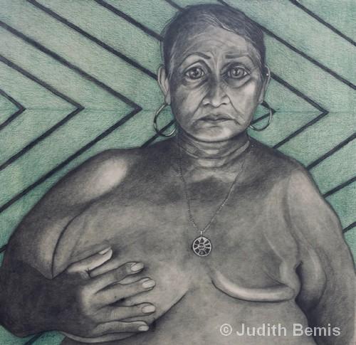 """Pesticide Casualty Costa Rica   Graphite & Colored Pencil   21x22""""   Judith Bemis"""
